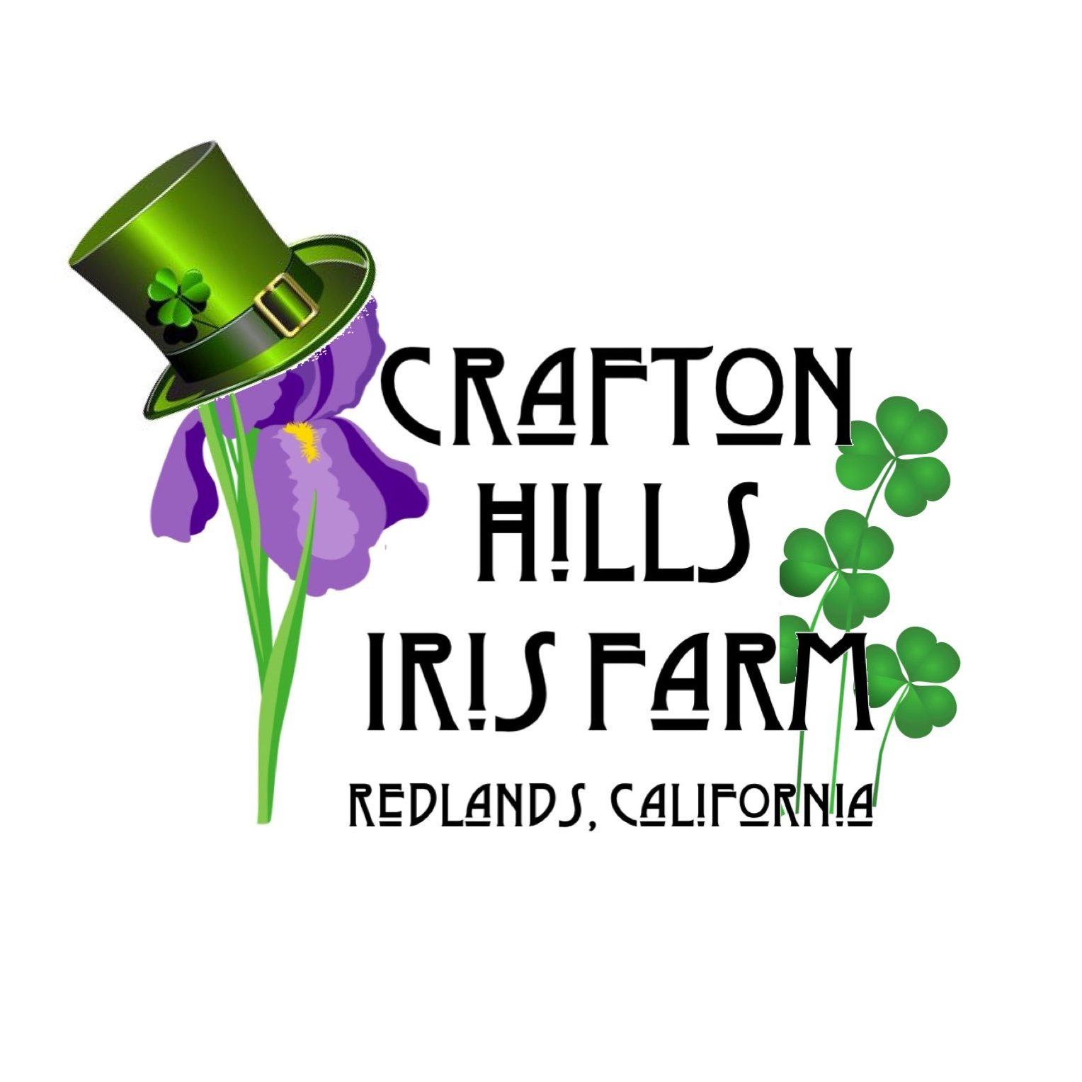 CHIF St Patricks Day Logo